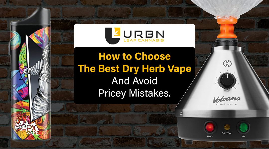 How to Choose the best dry herb vape and avoid pricey mistakes.